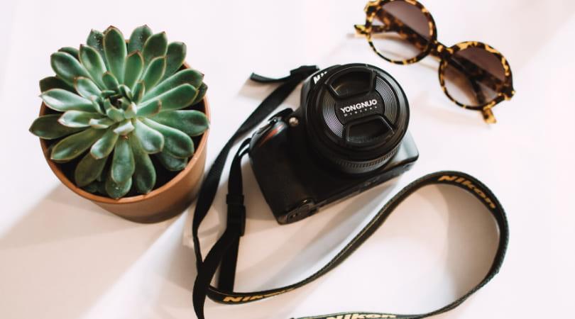 ▷ Cómo llevar más seguidores TODOS LOS DÍAS a Instagram y Pinterest con Milotree