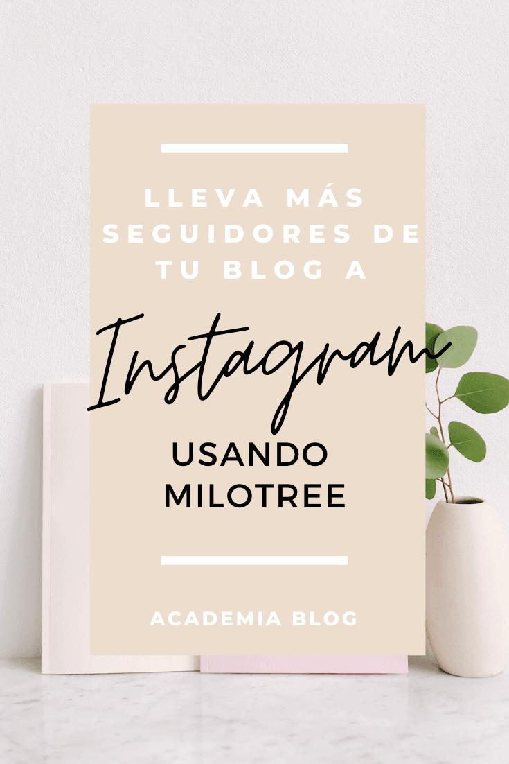 Descubre Banco de imágenes gratis lista 2020 para usar en tu página web y tus redes sociales #academiablog #InspírateEnCasa #emprendimiento #tipsblog #consejosblog