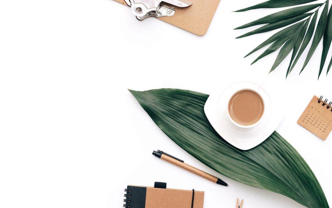 Cómo usar Tailwind Create – Crea y programa Pins Pinterest
