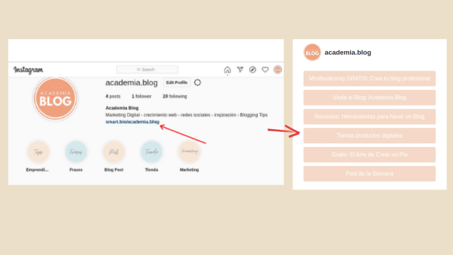 pagina smartbio ofrece tailwindapp perfil instagram academia blog